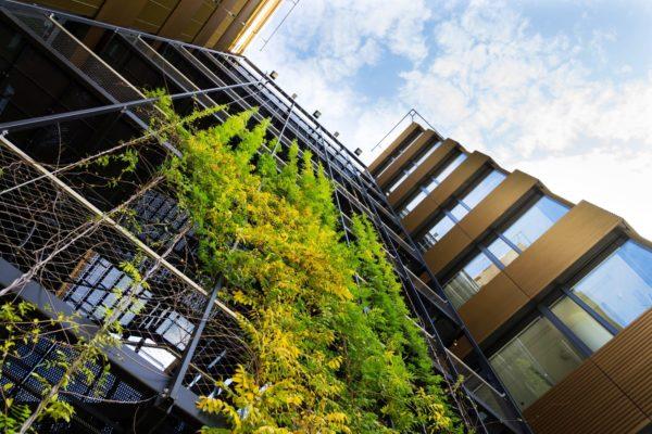 Renovation Wave europeo: mejorar el rendimiento energético de los edificios - Sostenibles